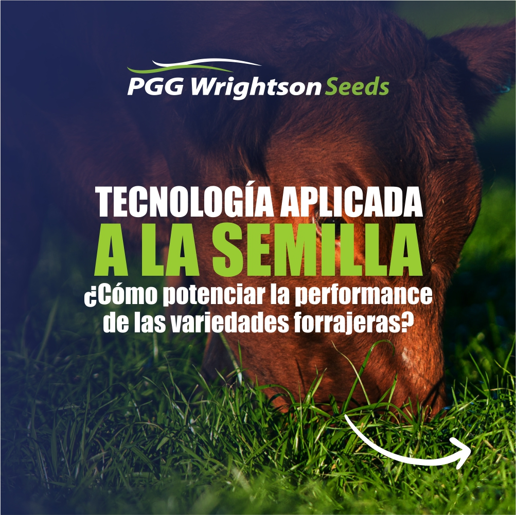 Tecnología aplicada a la semilla